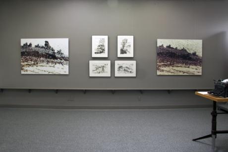 """Landscape Part II:Urban and Rural"" Installation"