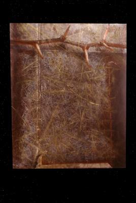 "Kathy Vargas, ""Through Earth Series"", han-colored gelatin silver print, 2000, 17"