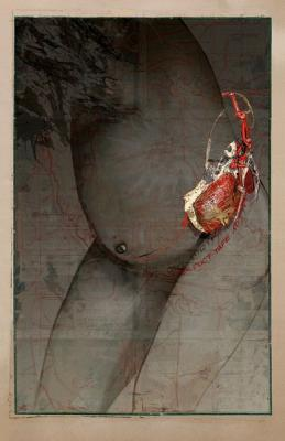 """Madonna Bomb 2"", 2012, archival pigment print, 48 x 31"""