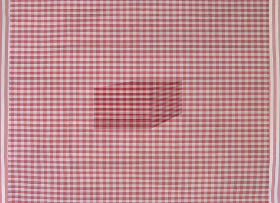 """Checkered Fabric, Red, Number 2"", 2013, archival inkjet print, ed. of 3, 16 x 22"", 25 x 31"" fr."