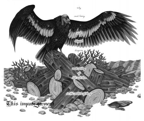 "Eric Beltz, ""California Condor"", 2014, graphite on Bristol, 22"" x 24"" framed"