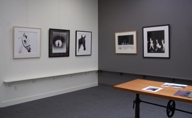 """""""Carolyn Krieg"""" Installation, May 9 - June 20, 2015"""