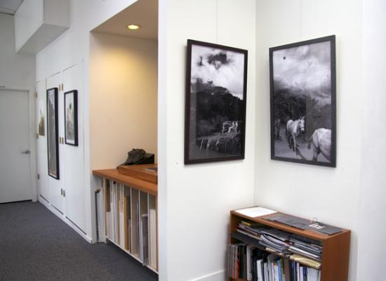 """Fred Birchman & Carolyn Krieg"" Installation, May 9 - June 20, 2015"