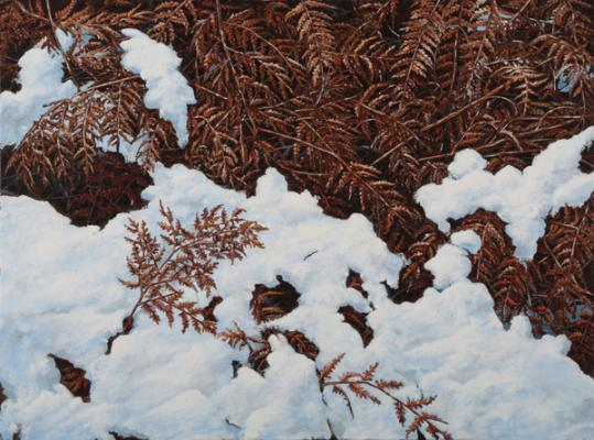 "Evelyn Woods, ""Bracken"", 2018, Oil on canvas, 30"" x 40"""