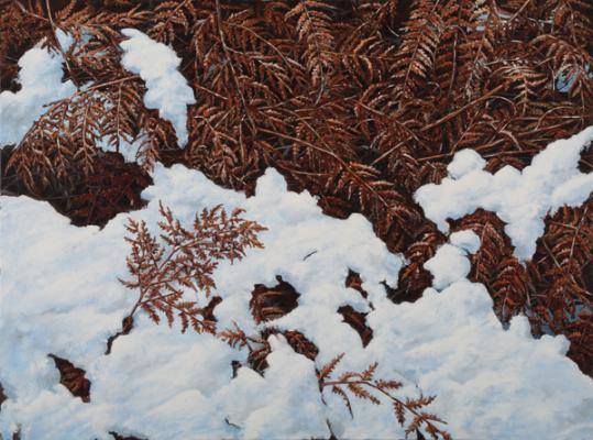 """""""Bracken"""", 2018, Oil on canvas, 30"""" x 40"""""""