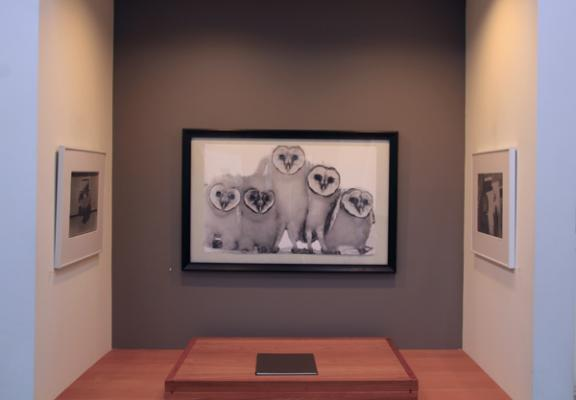 """""""The Black and White Photo Show"""" installation image"""