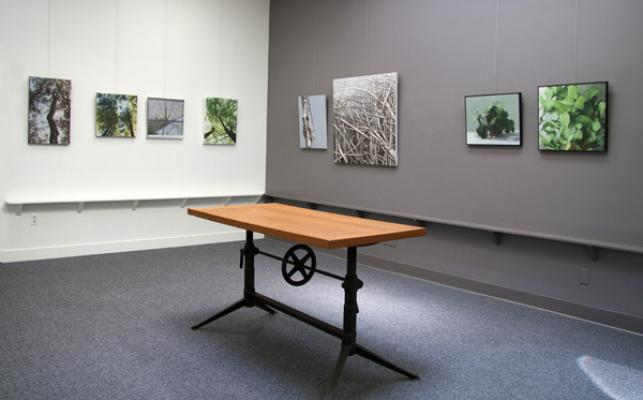 """Canopies"" installation"
