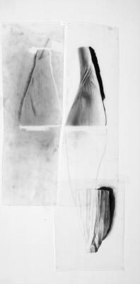 """Casting Drawings: Corn"", 2009, graphite on Mylar, 25 x 17.75"" framed"