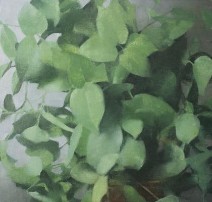 "Eric Elliott, ""Philodendron"", 2015, oil on canvas, 20 x 19"""