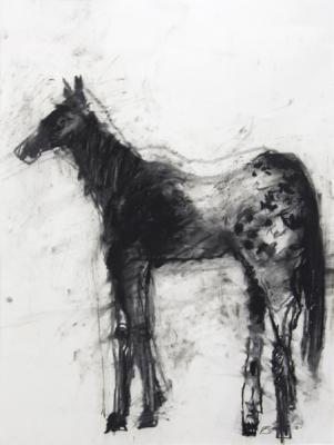 """Robert Schlegel, """"Equine #2"""", 2013, charcoal on paper"""