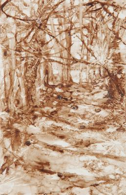 """Ellis Cove Trail"", 2016, walnut ink on paper, 5.75 x 3.75"""