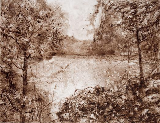 "Kathy Gore Fuss, ""Nature's Reward"", 2017, walnut ink on paper, 24 x 36"""