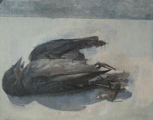"""Amy Huddleston, """"Bird Study"""", 2012, oil on canvas, 8 x 10"""""""