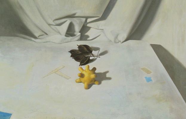 "Jim Phalen, ""White Curtain"", 2006, oil on panel, 18 x 28"""