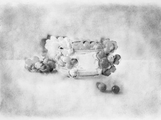 "Caroline Kapp, ""Grapes Three Ways"", inkjet print, 12 x 9"" image size"