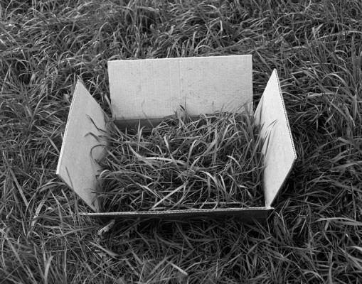 "Caroline Kapp, ""Open Box"", archival inkjet print, 10 x 8"" image size"