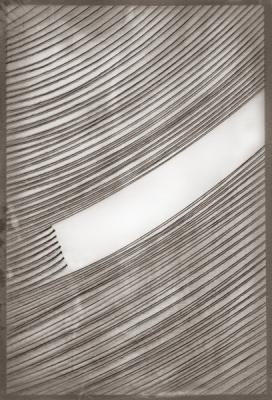 """Caroline Kapp, """"Wipe"""", 2017, archival inkjet print, 51.5 x 39.75"""