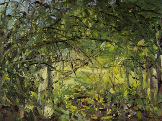 "Kathy Gore Fuss, Wooded Canopy I, 2014, oil on linen, 9 x 12"" im."