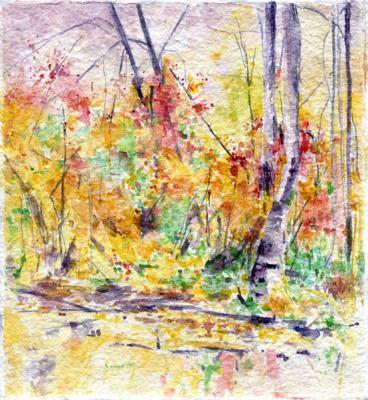 """Kimberly Clark, """"Arboretum, 11.18.11"""""""