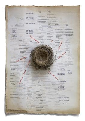 """Every Nest is a Breeding Nest"", 2009, archival pigment print, 24"" x 17"""