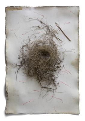 "Dianne Kornberg, ""Things Fall Apart"", 2009, archival pigment print, 24"" x 17"""