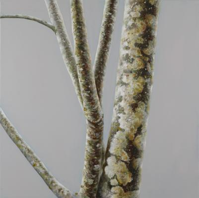 "Evelyn Woods,""Tree #5"", 2013, oil on canvas, 24 x 24"""