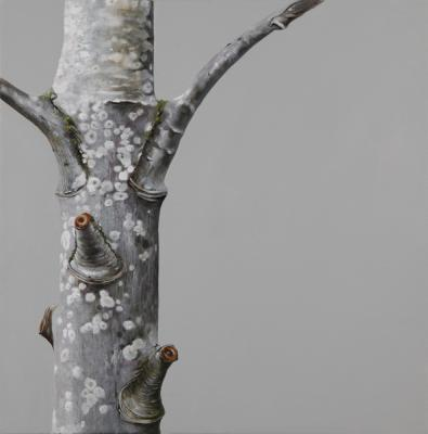 "Evelyn Woods, ""Tree #8"", 2013, oil on canvas, 20 x 20"""