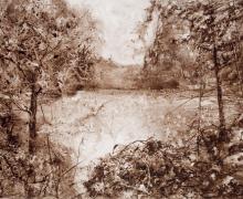 """Nature's Reward"", 2017, walnut ink on Yupo paper, 25.5"" x 33.5"" image, 36.75"" x 44"" framed"